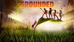 ترینر بازی Grounded